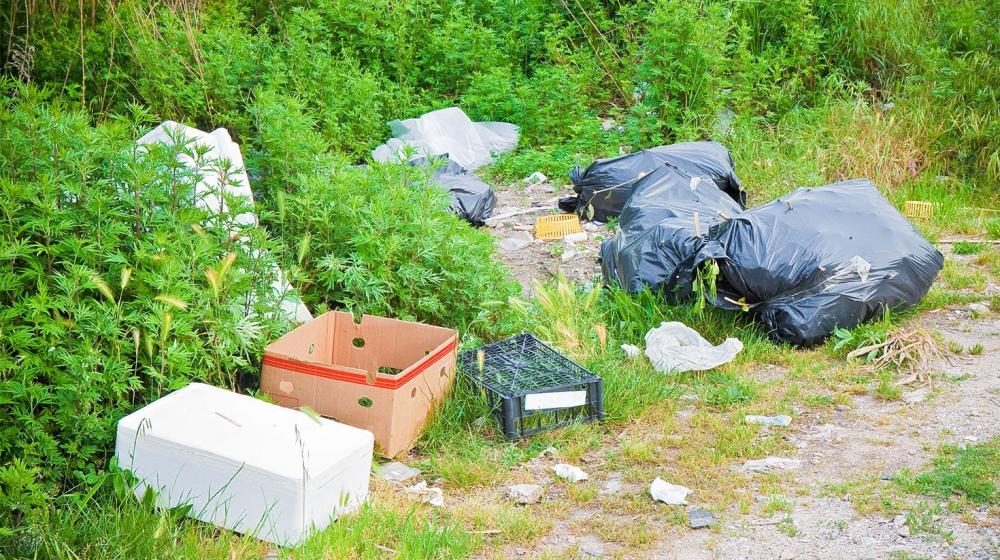 Dépôts sauvages de déchets: les députés créent une amende forfaitaire